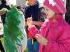 Gatvės muzikos diena ir Pramogų miestelis (10)
