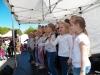 Gatvės muzikos diena ir Pramogų miestelis (12)