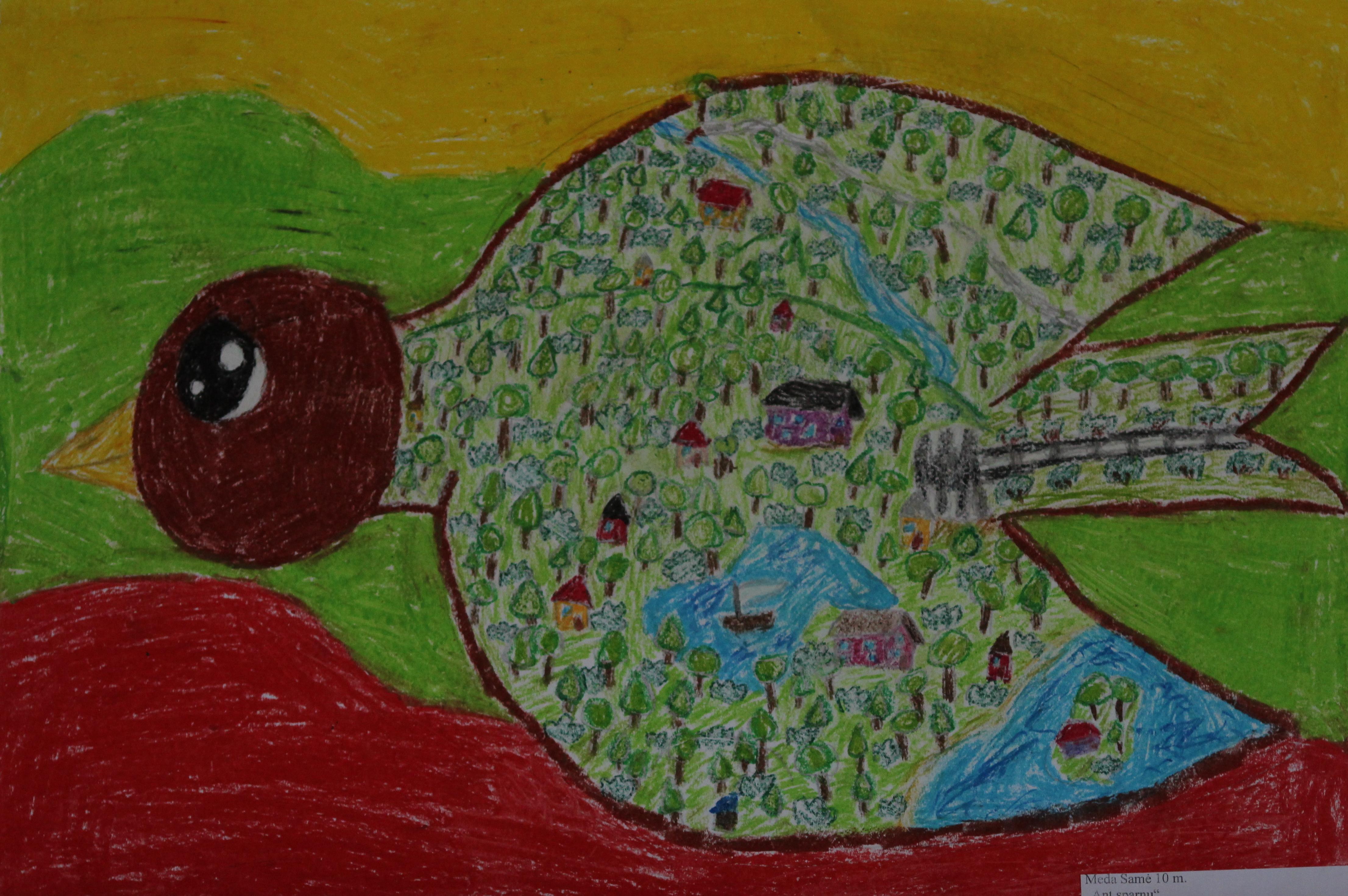 Meda Samė, 10 metų, Šiauliai