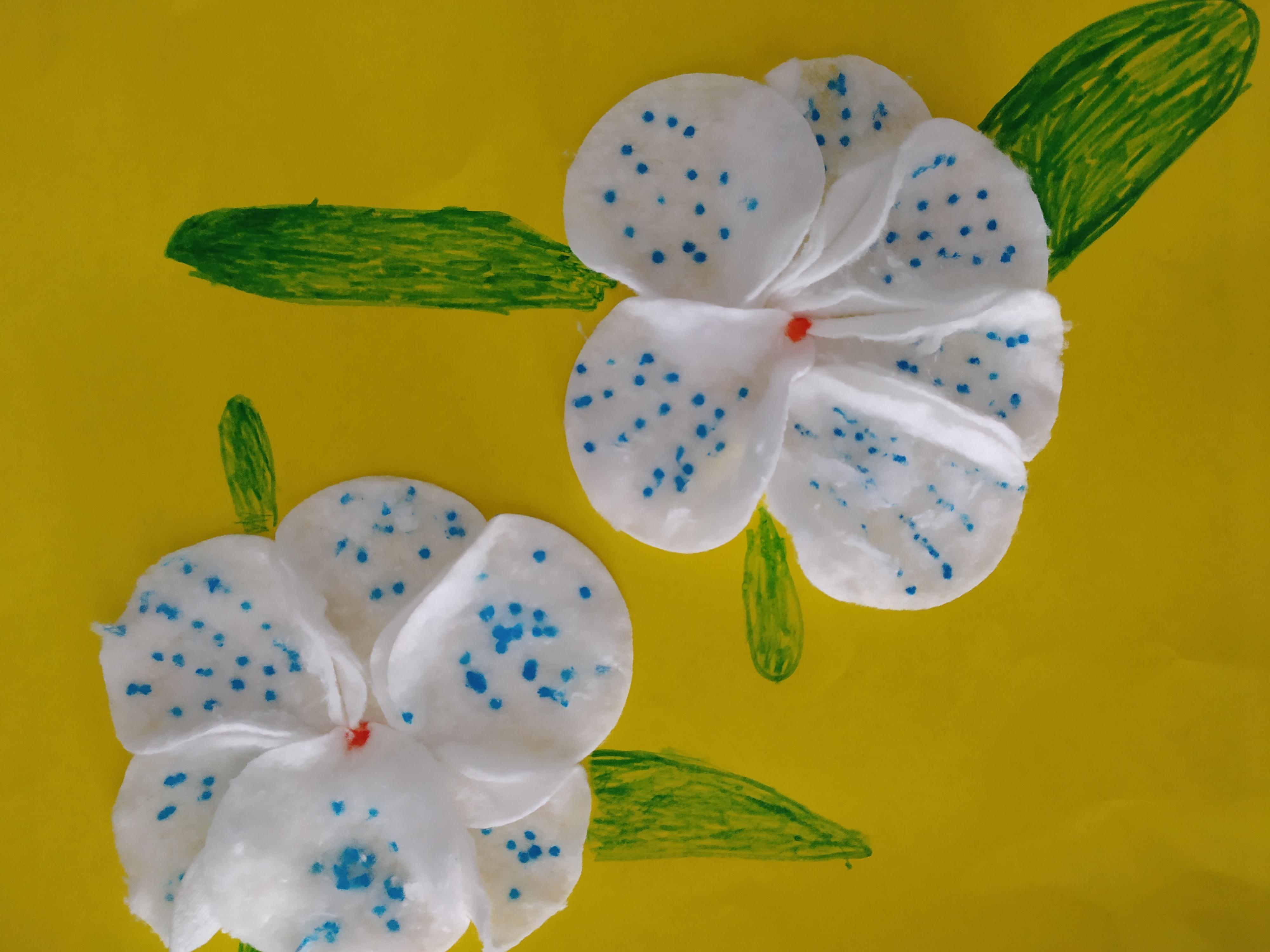 Pavasario geles (15)