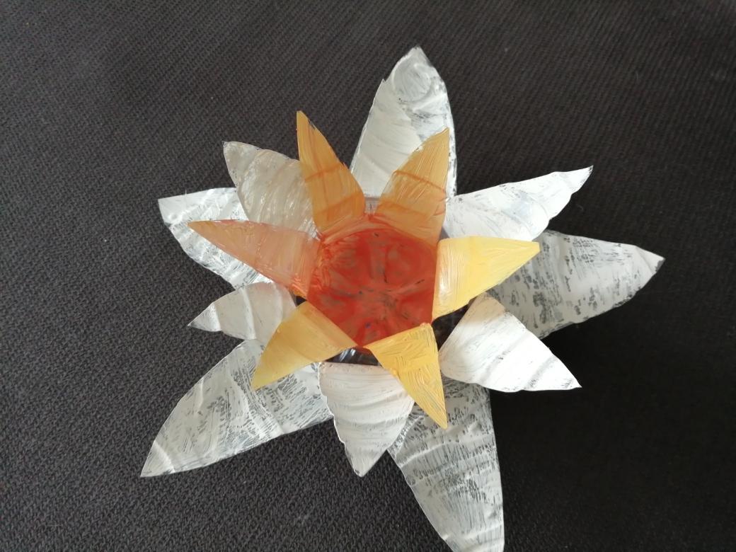 Pavasario geles (4)