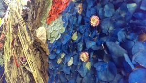 Floristikos burelis Ziede (3)