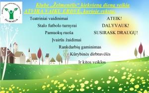 veiklos-page0001